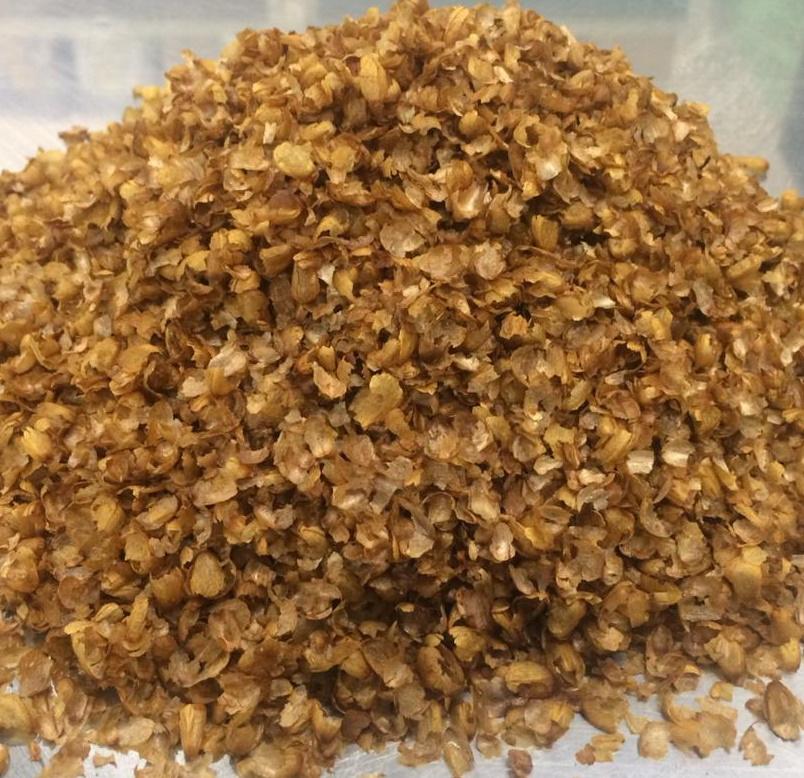 Фото плёнки ядра кедрового ореха